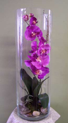 Orchid In A Vase Db01 Floristeria Heredia Flores By Jenni